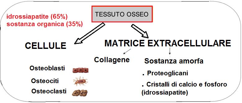 buy lexapro 10 mg