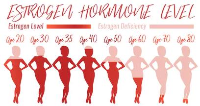Hits: 75Lagonade femminile, come la maschile ha un duplice attività: gametogenetica e steroidogenetica. L'ovaio produce tutte e tre le classi di steroidi sessuali: estrogeni, progestinici e androgeni ma in differenti […]