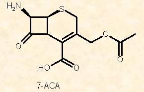 Hits: 19Le cefalosporine sono un gruppo di antibiotici beta-lattamici, battericidi, di estrazione vegetale o semisintetiche, resistenti alle più comuni β-lattamasi, che agiscono con un meccanismo d'azione simile alle penicilline, bloccando […]